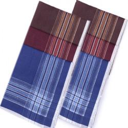 Pánské kapesníky modrá bordová hnědá 40x40cm balení 6 ks Etex 90607