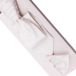 Svatební regata Šampaň - Anglická kravata Assante 90688