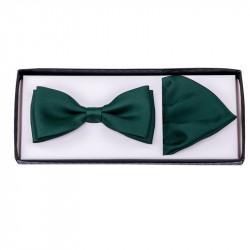 Zelený motýlek s kapesníčkem Assante 90284
