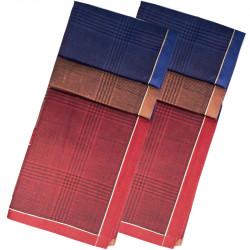 Pánské kapesníky hnědé modré bordó balení Etex 90601