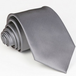 Stříbrná pánská kravata Greg 99921